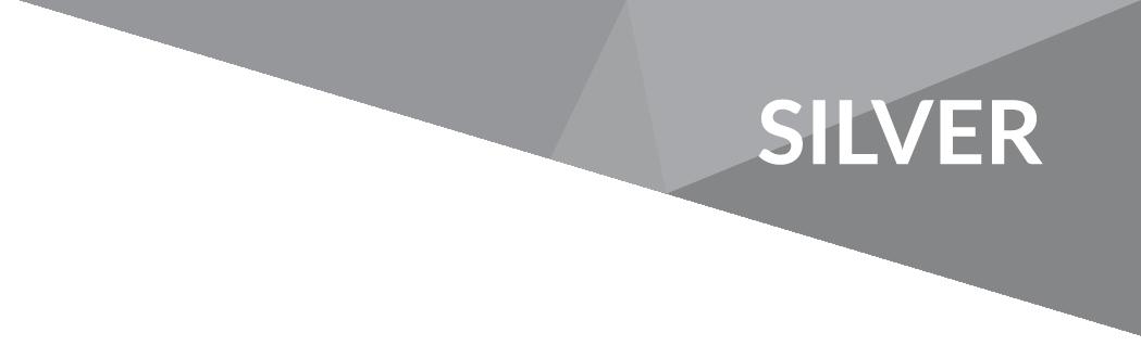 UKinbound silver member