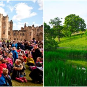Alnwick Castle Best Family Day Out