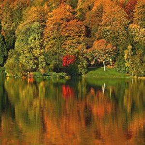 VisitWiltshire Autumn Campaign