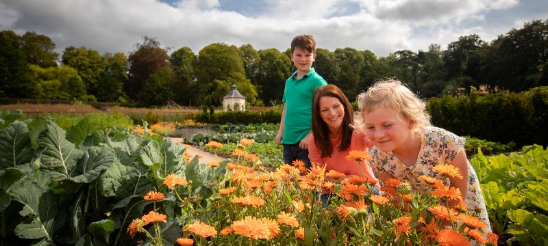 Hillsborough Castle gardens reopen
