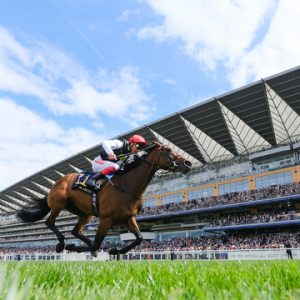 Royal Ascot At Home